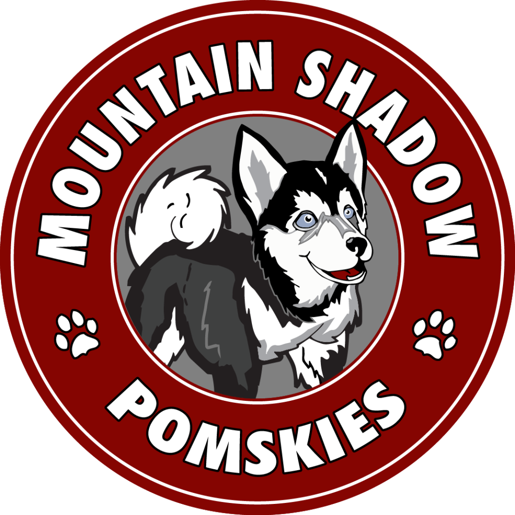 mountain shadow pomskies