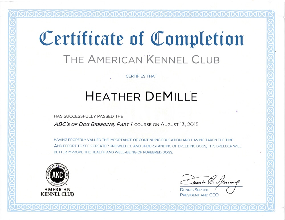 Heather DeMille AKC Certification