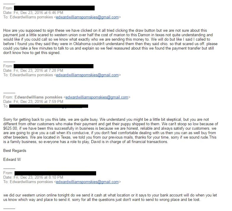 Pomsky Scam Email 5 - Pomeranian Husky Scam